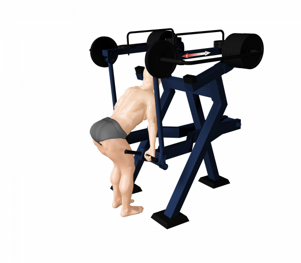 Trenażer mięśni nóg (martwy ciąg) oraz barków (nr kat. 7.41)